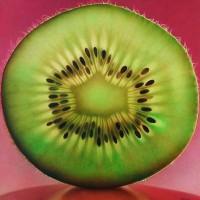 Радиально-кольцевое строение плодов
