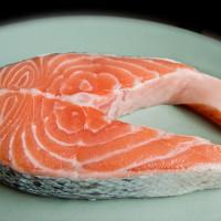 Слои в строении тела рыбы (лосось)