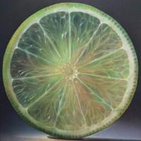 Радиально-кольцевое строение фруктов